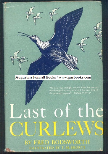 Image for Last of the Curlews